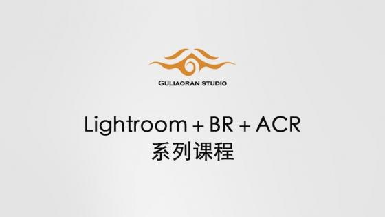 Lightroom系统课程