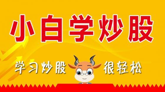 小白学炒股-股票入门教程