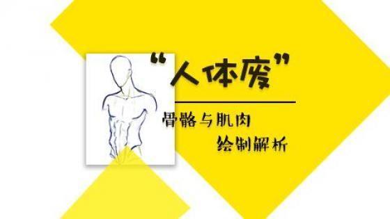 游戏原画CG插画人体骨骼与肌肉动态零基础入门到精通